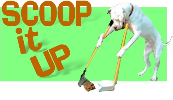 scoop it up